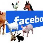 فيسبوك الحيوانات