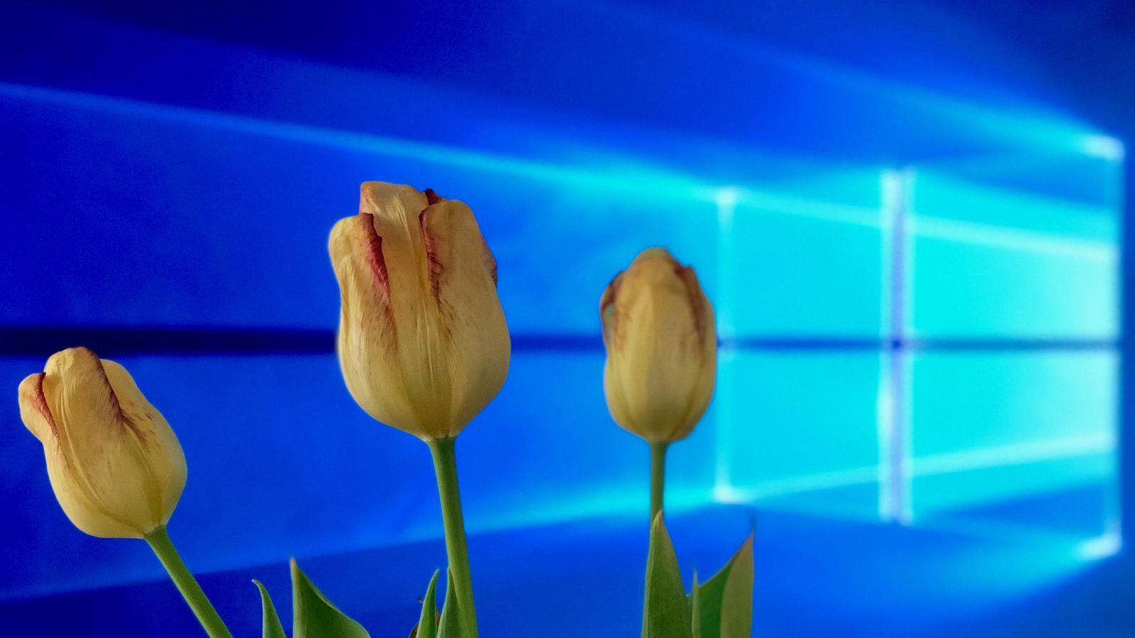 Windows 10 Spring Creators Update : ست خصائص في تحديث ويندوز 10