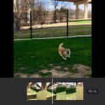 How to Rotate Video on Your iPhone or Mac كيفية تدوير الفيديوهات على ايفون